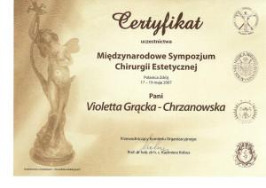 38-2007_sympozjum_chirurgii-1